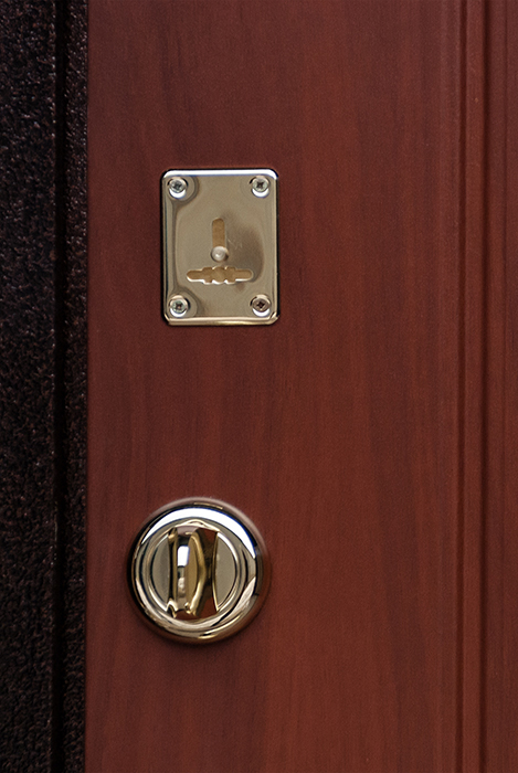 модерн входные железные двери