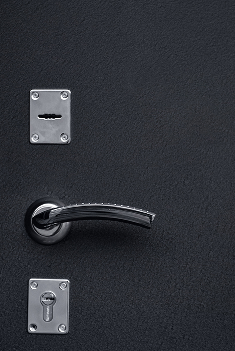 двери входные котельники черный шелк