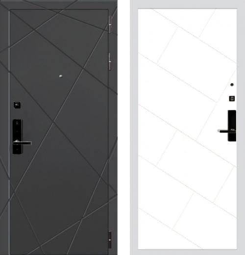 входные двери (стальные двери, металлические двери) DOORS007: дверь Баяр 1 ФЛ-292